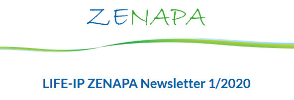 ZENAPA-Newsletter 1/2020 erschienen