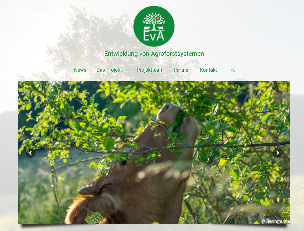 Start der Projektwebseite EvA – Entwicklung von Agroforstsystemen