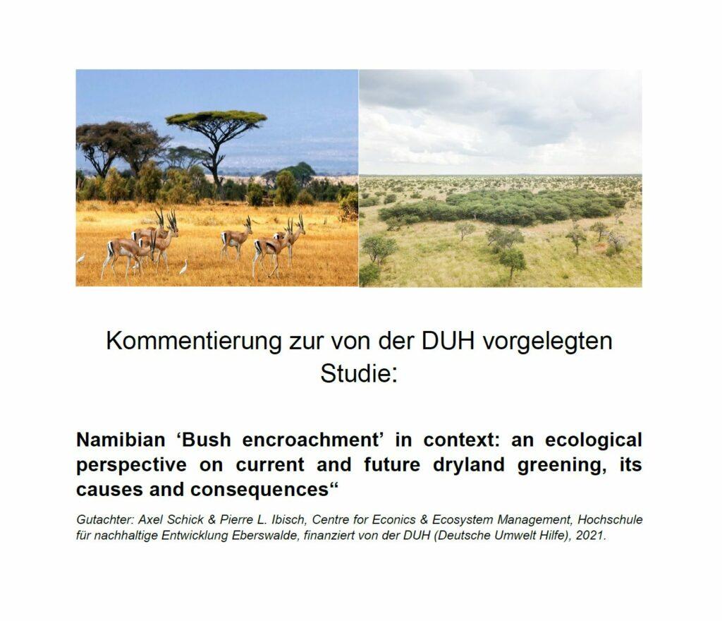 "Kommentierung zur Studie: ""Namibian 'Bush encroachment' in context"""